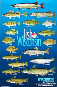 39 off the chain 39 fishing in wisconsin 39 s northwoods for Wisconsin fishing season